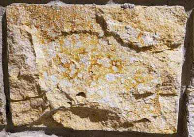 Natural stone the Exact Match staining process is modeled after